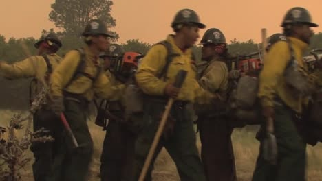 Firefighters-Fight-A-Forest-Fire