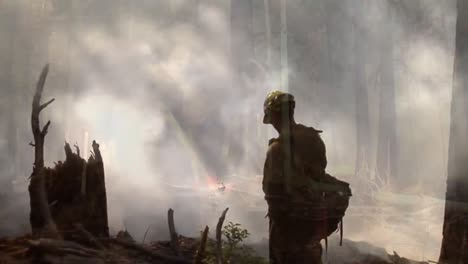 Firefighters-Fight-Forest-Fires