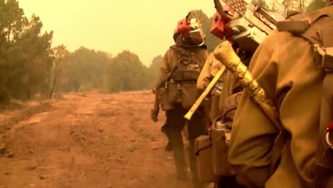 Firefighters-Fight-Forest-Fires-2