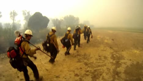 Firefighters-Fight-Forest-Fires-4