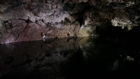 Bats-Fly-In-Around-A-Cave-With-A-Pool-At-Night-1