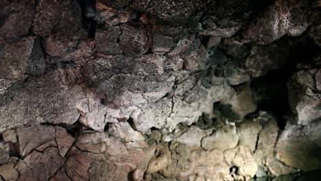 Los-Murciélagos-Vuelan-Alrededor-De-Una-Cueva-Con-Una-Piscina-Por-La-Noche-2