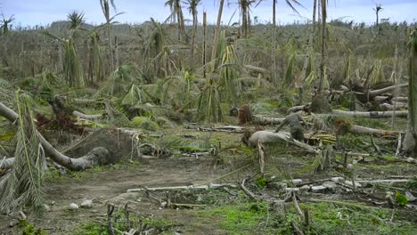Us-Troops-Walk-Through-The-Destruction-Of-Typhoon-Haiyan-In-The-Phillipines