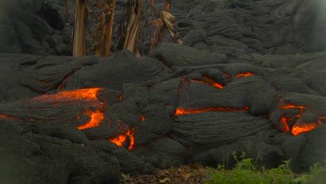 The-Puna-Lava-Flow-Near-The-Town-Of-Pahoa-Hawaii-5