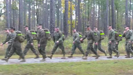 Soldiers-March-Through-A-Forested-Area-On-Exercise