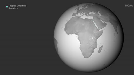 Una-Perspectiva-Global-Animada-Del-Declive-De-Los-Arrecifes-De-Coral