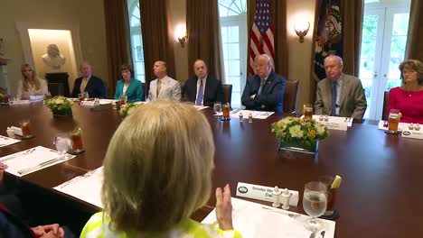 West-Virginia-Senator-Shelley-Moore-Capito-Advises-Us-President-Donald-Trump-In-The-White-House-About-The-Fight-Against-The-Opoid-Epidemic