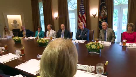 West-Virginia-Senator-Shelley-Moore-Capito-Advises-Us-President-Donald-Trump-In-The-White-House-About-The-Fight-Against-The-Opoid-Epidemic-1