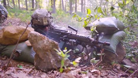 Los-Marines-Estadounidenses-Participan-En-El-Entrenamiento-De-Guerra-En-La-Jungla-En-El-Bosque-Con-Camuflaje-Y-Rifles-4