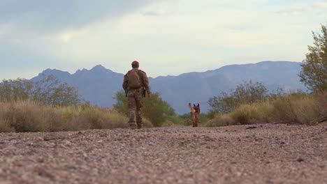 A-Member-Of-The-Us-Border-Patrol-Walks-The-Border-Between-The-Us-And-Mexico-With-A-Dog-Canine