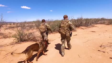 Us-Border-Patrol-Agents-Walk-The-Us-Mexico-Border-Utilizing-A-K9-Canine-Dog-To-Assist