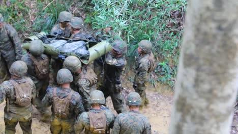 Los-Marines-Estadounidenses-Y-Los-Marineros-De-La-Marina-Estadounidense-Con-El-Tercer-Grupo-De-Logística-Marina-Participan-En-La-Guerra-En-La-Jungla-Y-El-Entrenamiento-De-Supervivencia-En-Okinawa-Japón