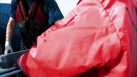 Fish-Are-Caught-In-Nets-And-Measured-On-Alaska-S-Kuskokwim-River