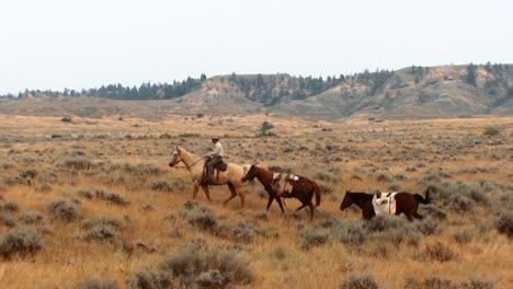 Männer-Reiten-Pferde-Im-Charles-M-Russell-National-Wildlife-Refuge-Anderswo-Im-Reservat-Feuerwehrleute-Roden-Einen-Wald