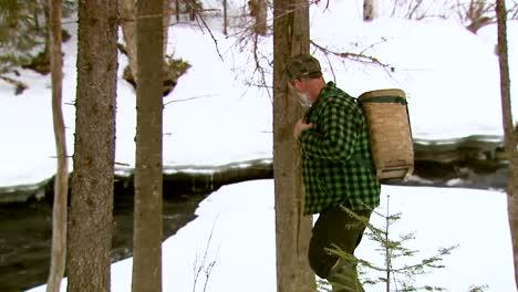 Ein-Trapper-Bewegt-Sich-Mit-Schneeschuhen-Entlang-Eines-Winterlichen-Baches-In-Vermont