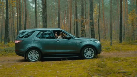 Forest-Driving-Adventure-39