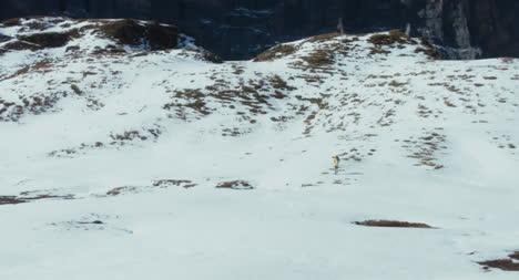 Fernwanderer-Im-Schnee-01