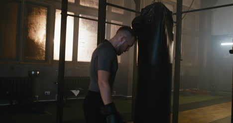 Boxer-Panting-by-Punching-Bag