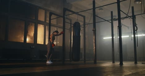 Boxer-Ruht-Cinemagraph