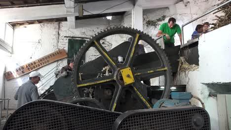 Madeira-Sugar-Cane-Mill