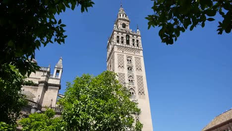 Seville-Giralda-Tower-Framed-By-Leaves