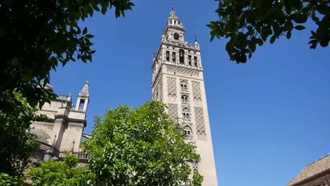 Torre-Giralda-De-Sevilla-Enmarcada-Por-Hojas