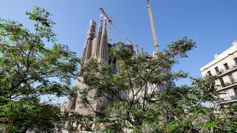 Spain-Barcelona-Sagrada-Familia-With-Tree-In-Front