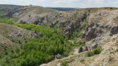 Spain-Canyon-Of-The-Rio-Dulce-With-Trees-Near-Siguenza