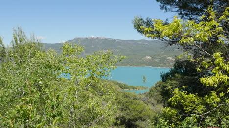 Spain-Embalse-De-Mediano-Between-Trees