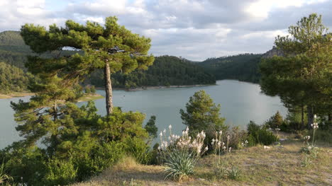 Spain-Serrania-De-Cuenca-Mountain-Lake-View-With-Pines