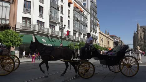 Spain-Seville-Horses-And-Buggies