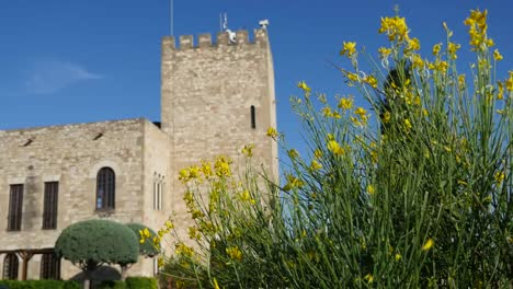 Spain-Tortosa-Castle-And-Yellow-Flowers
