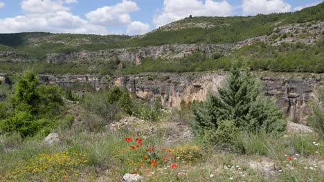 Spain-Vista-With-Wildflowers-Near-Cuenca