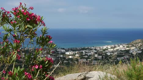 Greece-Crete-Coast-Framed-With-Oleander
