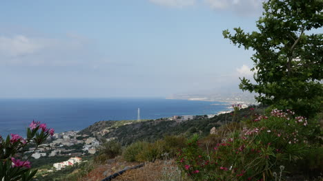 Greece-Crete-North-Coast-Tree-Framed-View
