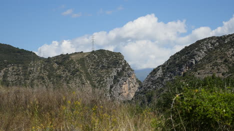 Spain-Pyrenees-Weeds-In-Front-Of-Cliffs