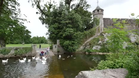 Ireland-Cahir-Castle-On-River-Suir-With-People-Feeding-Geese