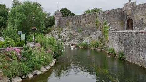 Ireland-Cahir-Castle-Wall-By-River-Zoom-And-Pan