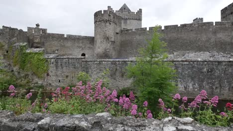 Ireland-Cahir-Castle-Wall-With-Flowers
