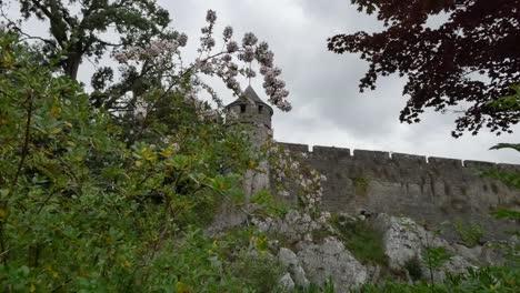 Ireland-Cahir-Castle-Wall