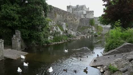 Ireland-Cahir-River-With-Castle-And-Birds