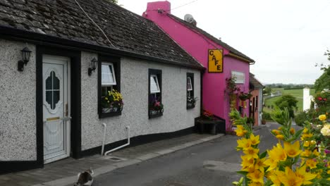Ireland-Cashel-White-And-Pink-Cottages-With-Yellow-Flowers