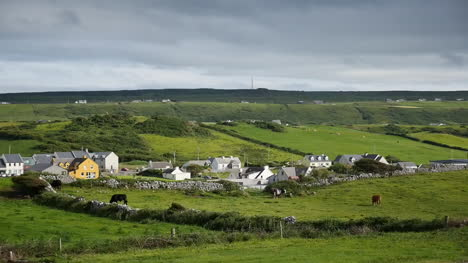 Ireland-County-Clare-Doolin-Village-With-Cows-Grazing