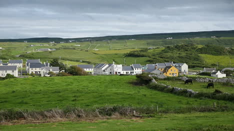 Ireland-County-Clare-Doolin-Village-With-Fields-And-Cows