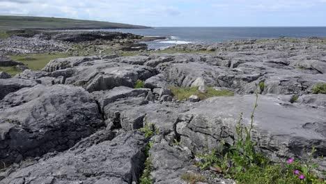 Ireland-County-Clare-The-Burren-Barren-Rocks-Along-Coast