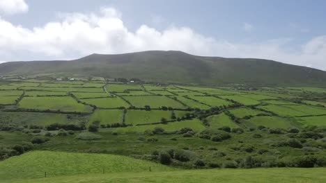 Ireland-Dingle-Peninsula-Hill-With-Hedgerows-Time-Lapse-Pan