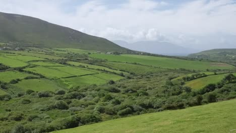 Ireland-Dingle-Peninsula-Rolling-Slopes-And-Hedgerows-Zoom-And-Pan