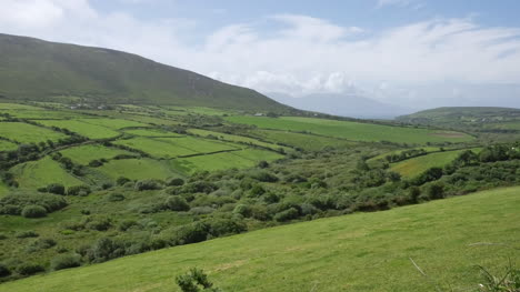 Ireland-Dingle-Peninsula-Rolling-Slopes-And-Hedgerows