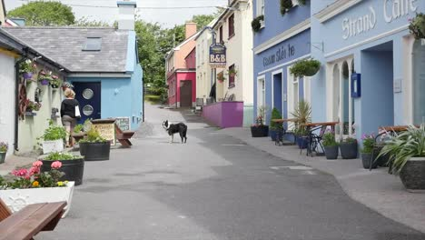 Ireland-Dingle-A-Dog-Walks-Up-A-Street-