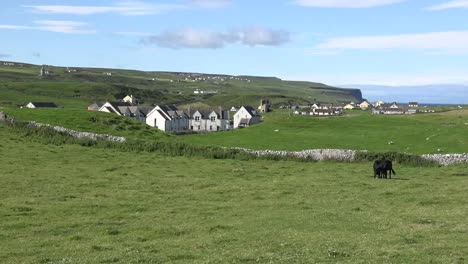 Ireland-Doolin-View-With-Black-Cows-And-Houses-Zoom